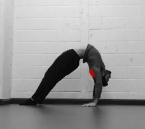 shoulders bridge mobility
