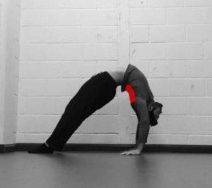 Thoracic spine bridge mobility